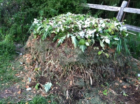 Compost (2)