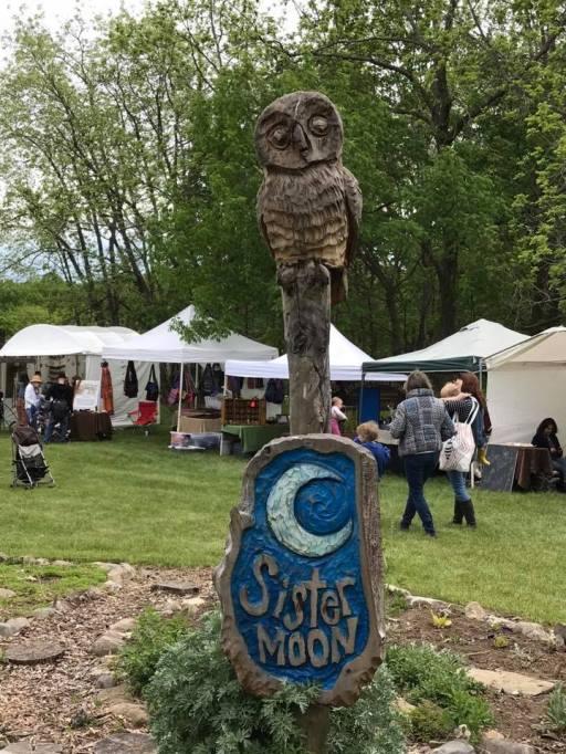 Owl 2017 Matty Carl
