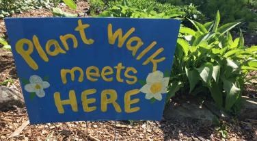 Plant Walk 2017