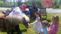 Pony Rides 2017 Steff Blake-Lastra